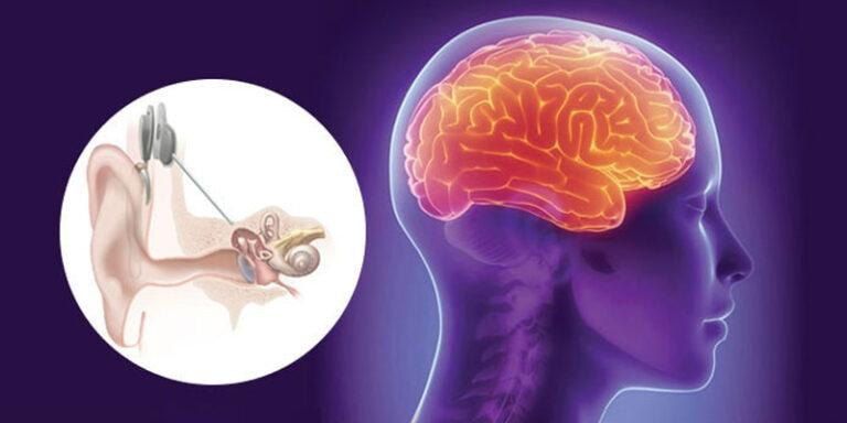 Why it's so Important Your Hearing Aids are Brain-Friendly?